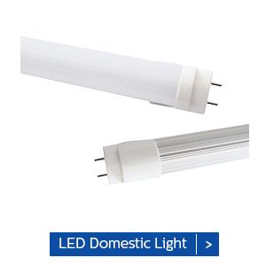 led domestic light